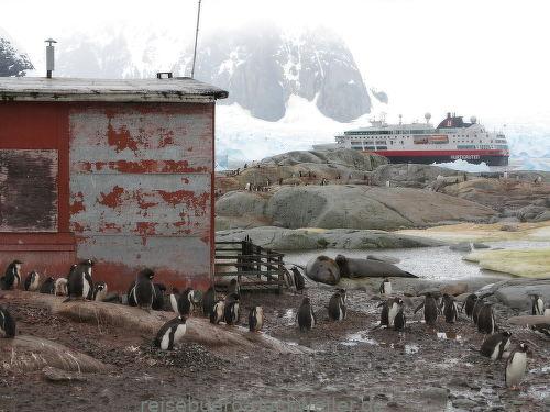 Antarktis 2