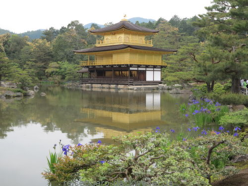 Goldener pavillion kyoto japan
