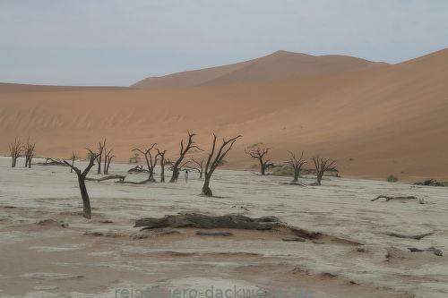 Sossusvlei 1 namibia